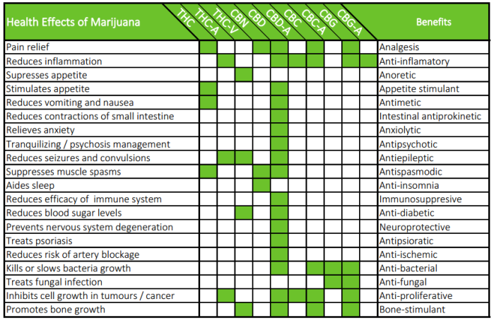cannchart