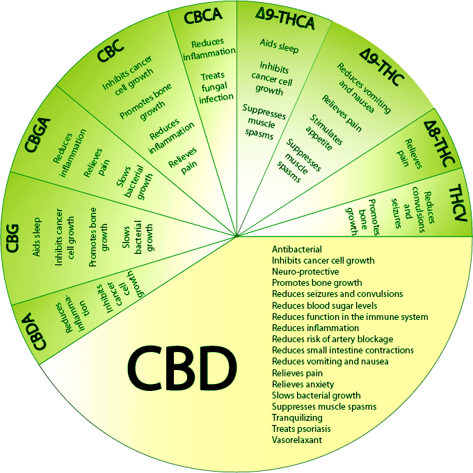 CBD_Wheel