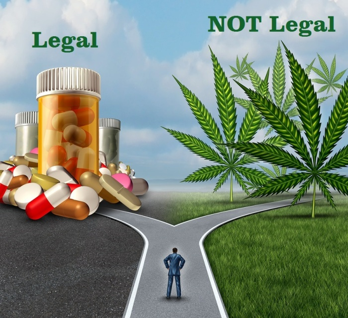 Marijuana Medical Choice