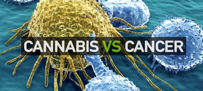 Cannabis-Cancer-and-Compassion-01