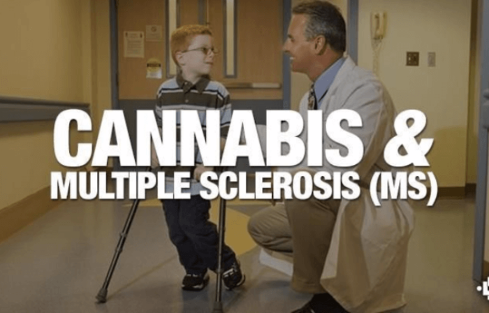 cannabis-and-multiple-sclerosis-ms-1